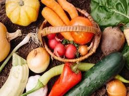 無農薬野菜のメリットとデメリットを紹介!有機野菜との違いは?